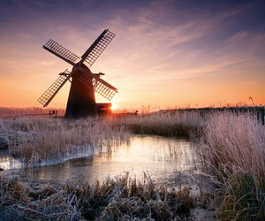 beautiful, holland, and netherlands image