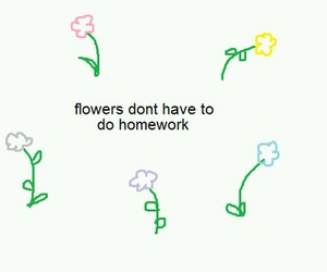 flowers, homework, and tumblr image