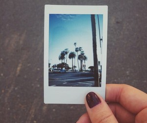 polaroid, palms, and picture image