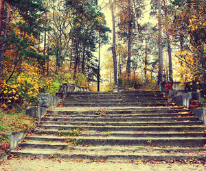 autum, beautiful, and old image