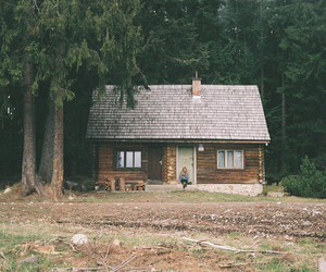 house, forest, and indie image