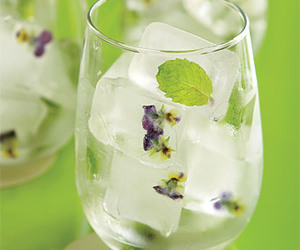 diy, food, and ice cubes image