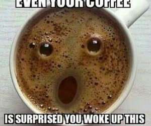 coffee, funny, and lol image