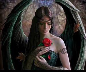 angel, rose, and dark image
