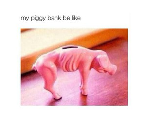 funny, money, and Bank image