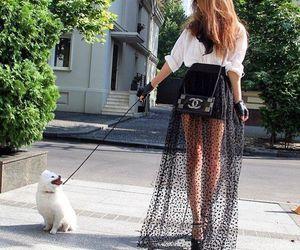 fashion, chanel, and dog image