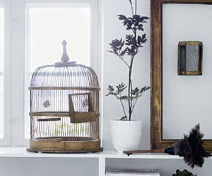 white, birdcage, and cage image