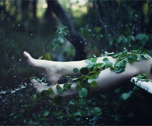 forest, feet, and nature image
