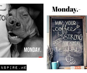 chill, coffee, and monday image