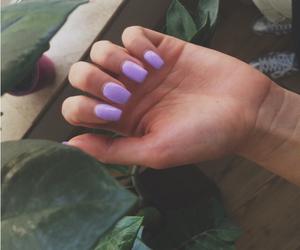 color, lila, and nail image