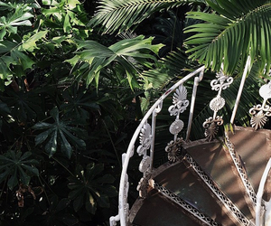 green, aesthetic, and tropical image