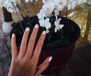 flowers, nails, and girl image