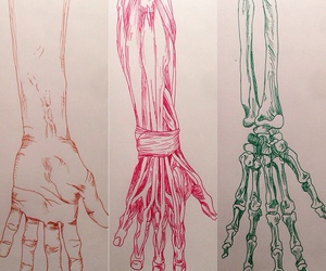 art, hand, and drawing image