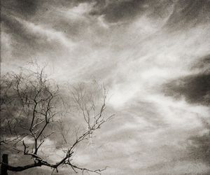 black ans white, dark, and photografy image