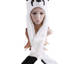 hat, cute, and panda image
