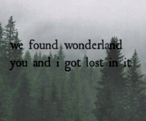 background, quote, and wonderland image
