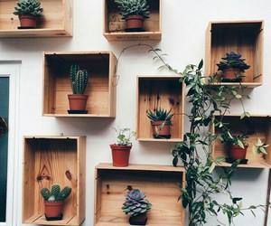 cactus, creative, and good life image