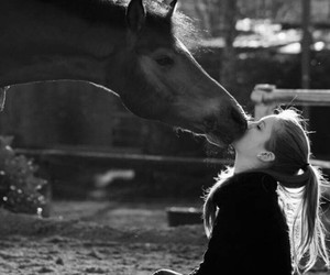 girl, horse, and kiss image