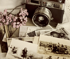 camera, flowers, and photograph image
