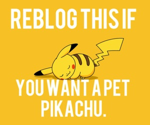 pikachu, pokemon, and pet image