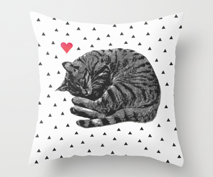 cat, pillow, and decor image
