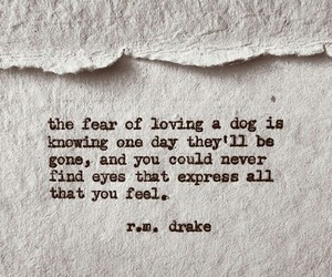 quote, love, and rmdrake image