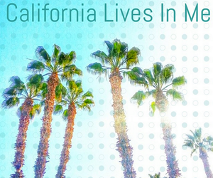 california and palm trees image