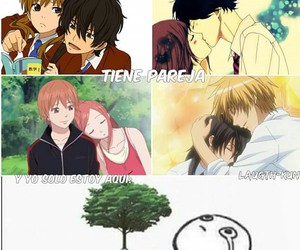lovely complex, kaichou wa maid sama, and ao haru ride image
