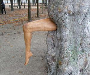 art, legs, and nature image