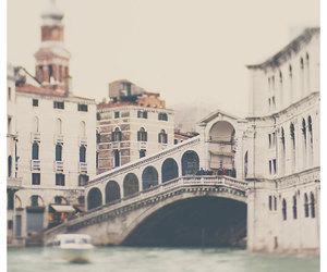 bridge, inspire, and photography image