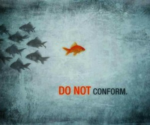 fish, inspiration, and think different image