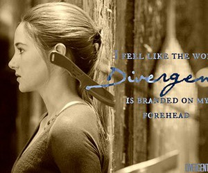 divergent, knife, and tris image