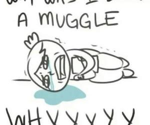 muggle and harry image