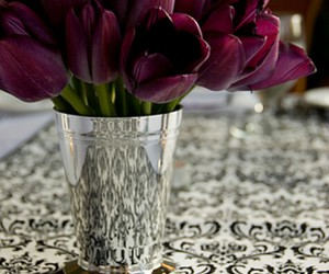 tulips and wallpaper image