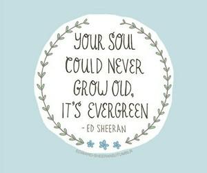 ed sheeran and thinking out loud image