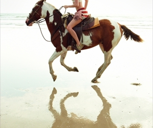 horse, beach, and model image