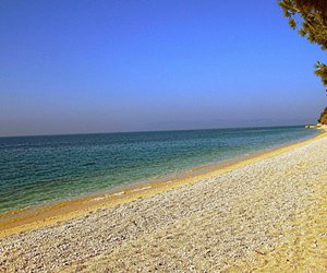 beach, summer, and Dalmatia image
