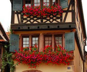 france, restaurant, and alsace image