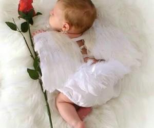 dreams, good night, and sweet image