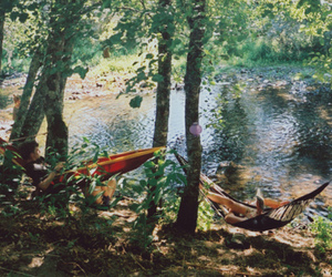 nature, photography, and hammock image