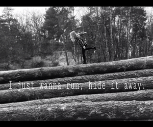 black and white, forest, and Lyrics image