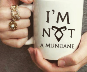mundane, book, and shadowhunters image