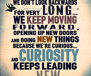 curiosity, life lesson, and walt disney image