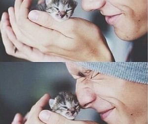 boy, cat, and kitty image