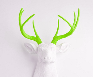 deer and decor image