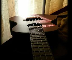 instrument, photography, and ukulele image
