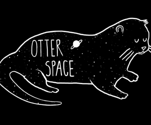 otter, space, and animal image