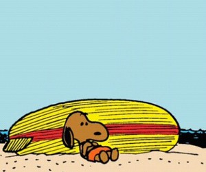 snoopy, summer, and surf image