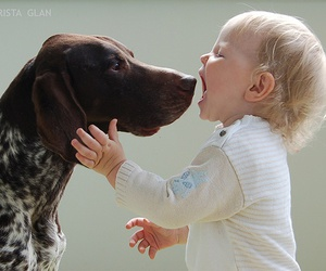 baby, dog, and photography image