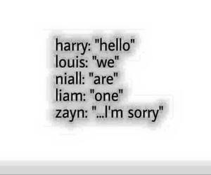 cry, sorry, and niall horan image
